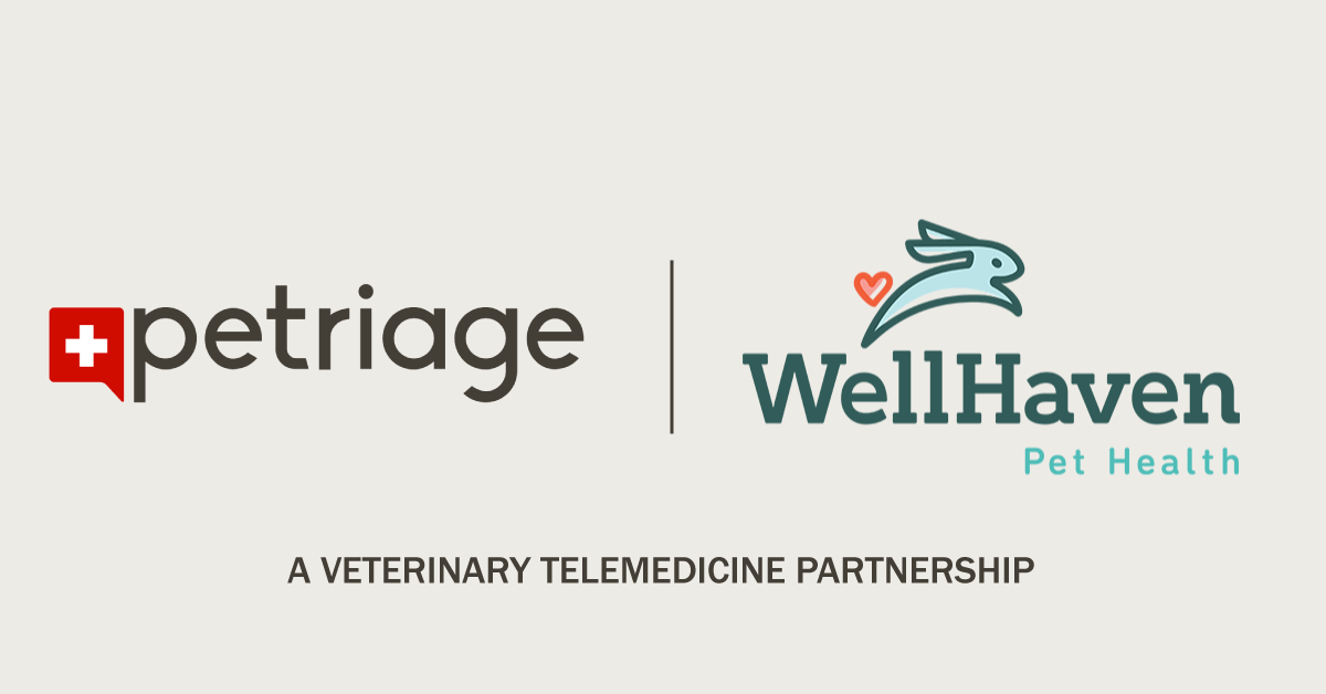 "Graphic with Petriage logo and Well Haven Pet Health logo with ""A Veterinary Telemedicine Partnership"" in text."